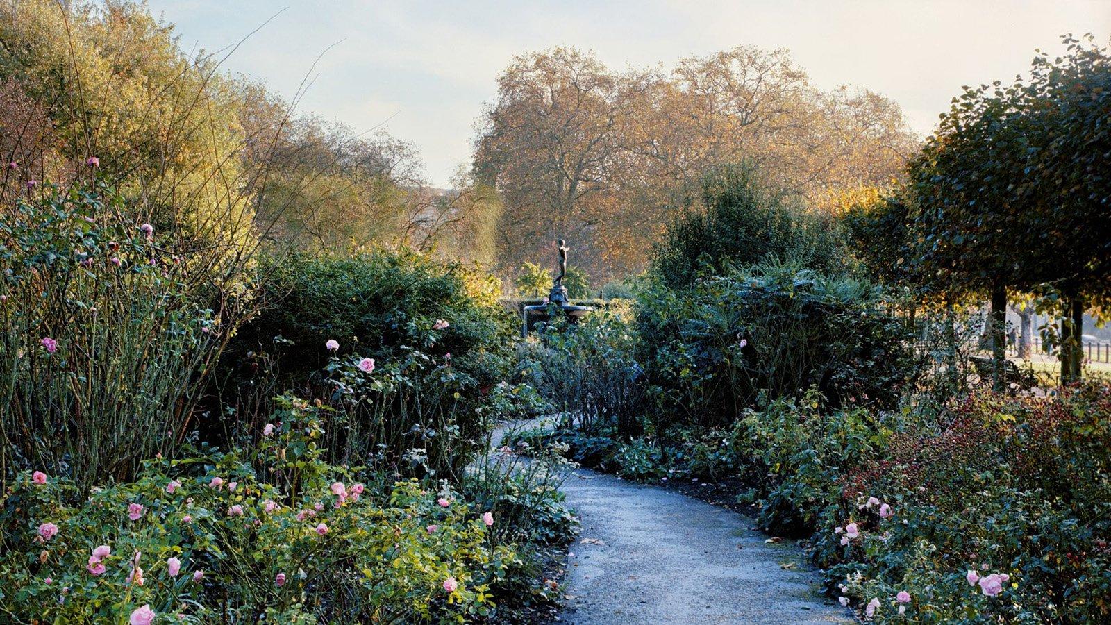 The Rose Garden at Hyde Park