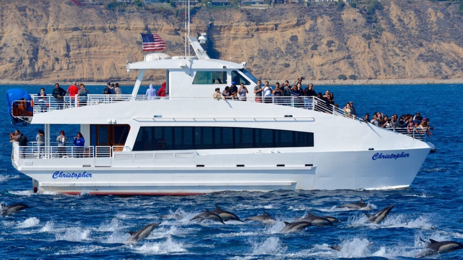 Whale Watching with Harbor Breeze Cruises