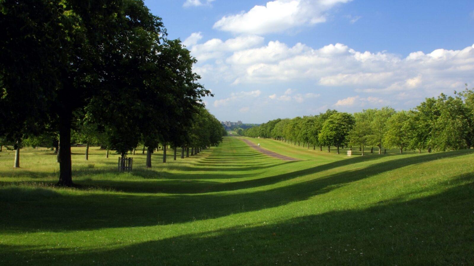 windsor garden dorchester collection summer 2019 ideas what to do