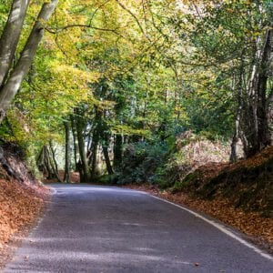 Pedal power: 6 cycle routes near Coworth Park
