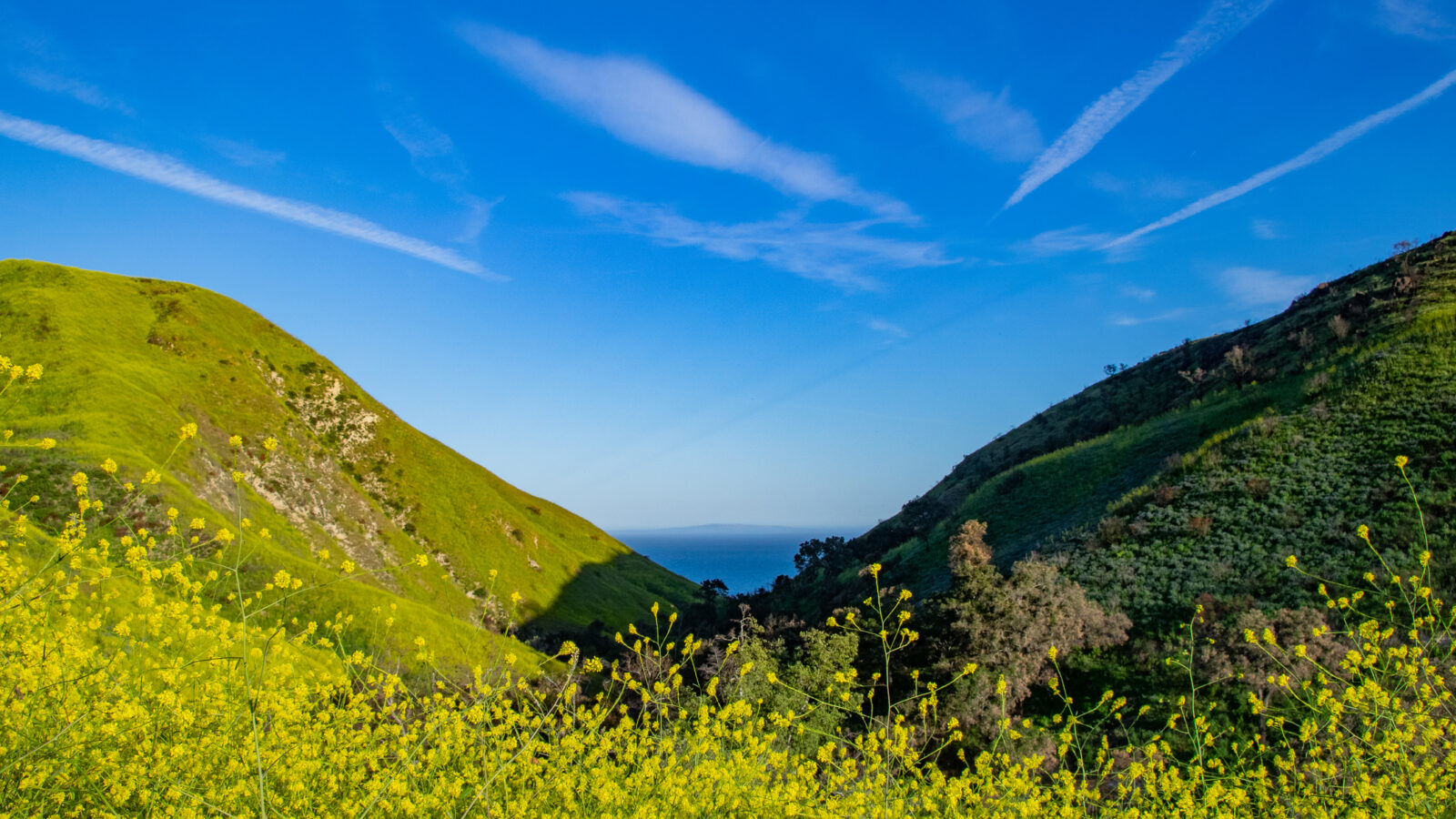 Solstice canyon malibu blue skies green hills
