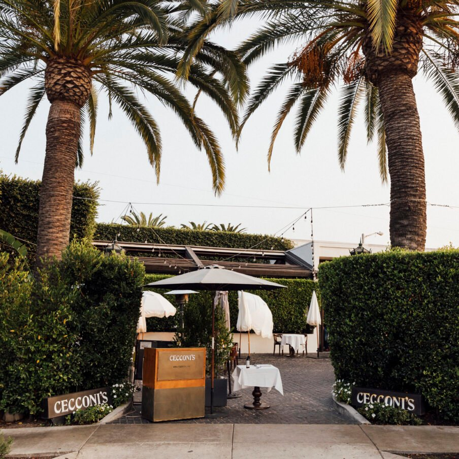 Ceconis host stand and palm trees