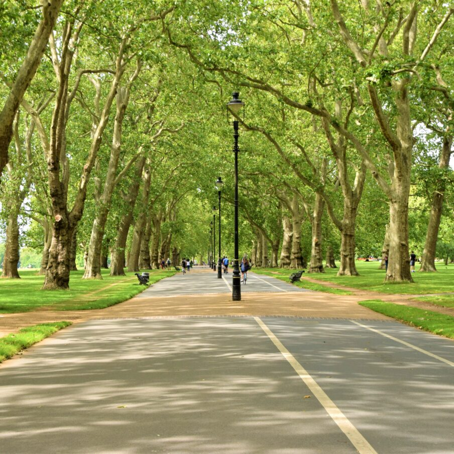 Tree-lined road in the iconic Hyde Park, London, daytime view