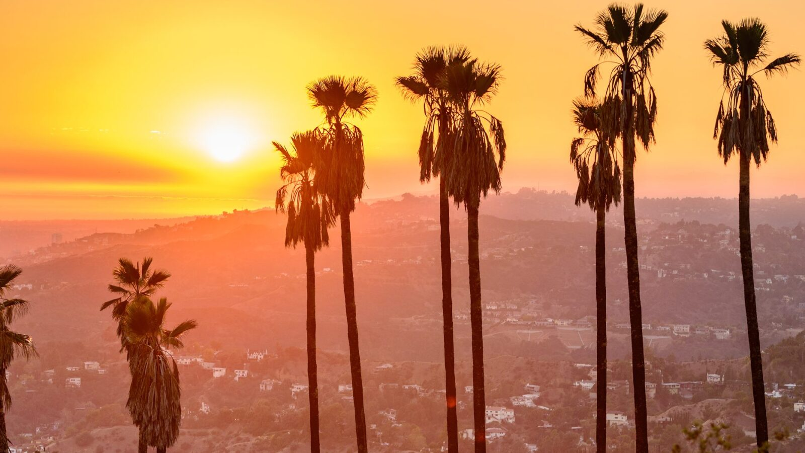 View of the Los Angeles skyline