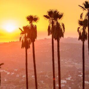 When in LA…