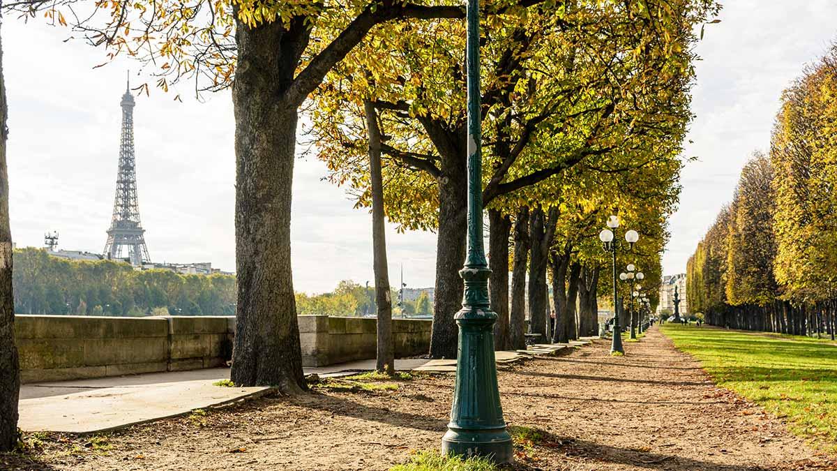 Siene River - Paris