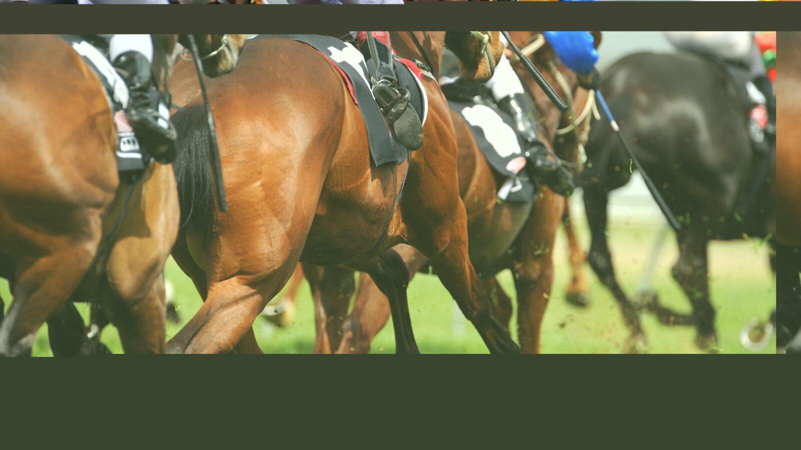 Victoria Cup Raceday
