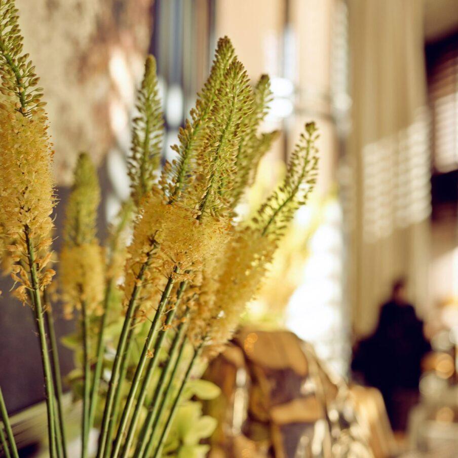 Florist at 45 Park Lane