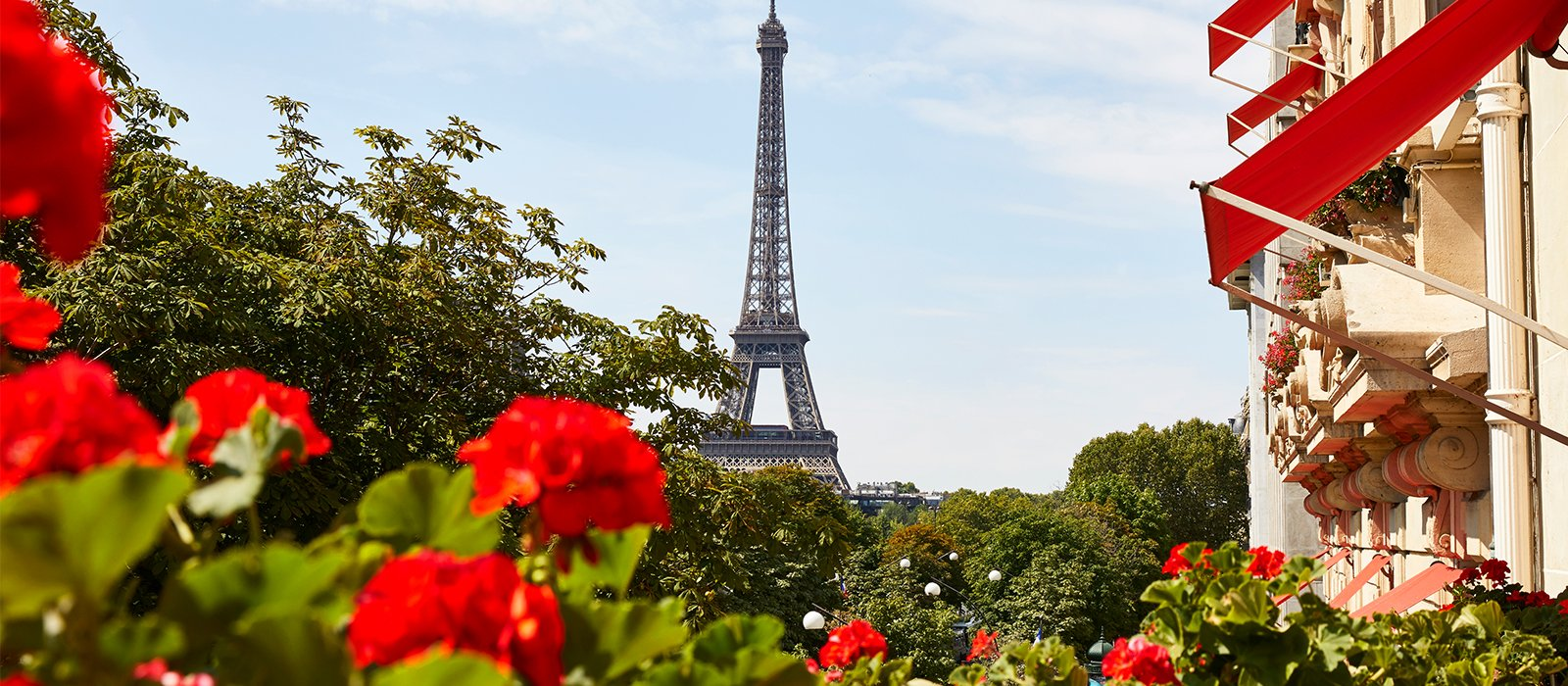 This shows the view on the Eiffel tower from Hotel Plaza Athénée